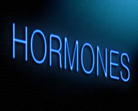 05hormones