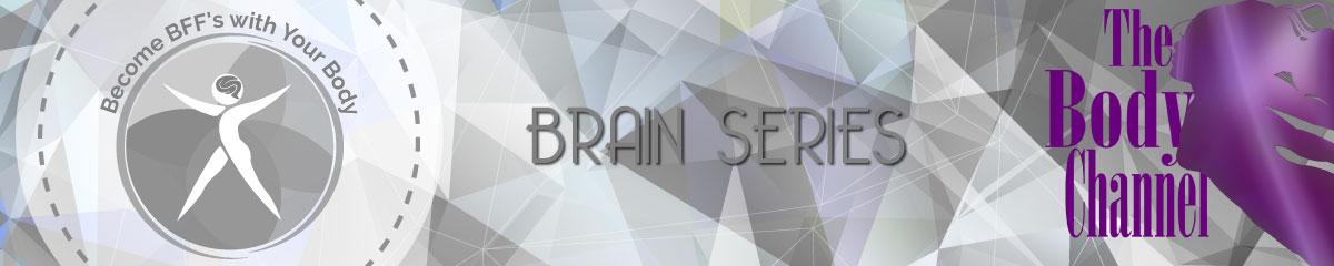 Lynn's Brain Series