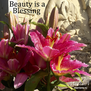 Beauty is a Blessing