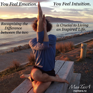 Emotion-Intuition