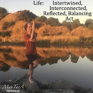 Life Balancing  Act